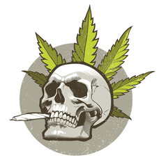 Skull with cigarette and marijuana leaves on the background