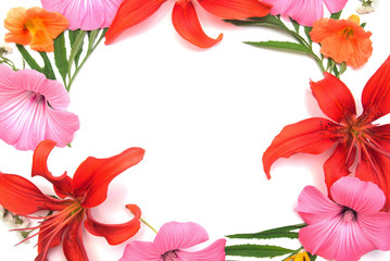 Wreath of flowers lily, mallow, nasturtium and  isolated on white background. Wedding card. Flat lay, top view. Love. Valentine's Day. Easter. Woman