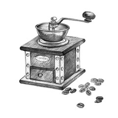 Hand drawn vintage coffee grinder with coffe beans. Pencil drawing.