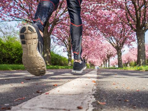 Sportschuhe oder Laufschuhe laufen über Asphalt Fußweg einer Allee
