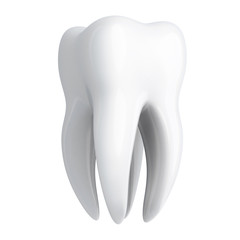 Human Tooth white
