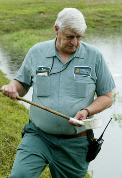 RETAINING POND CHECKED FOR SUSPECT MOSQUITO LARVAE.