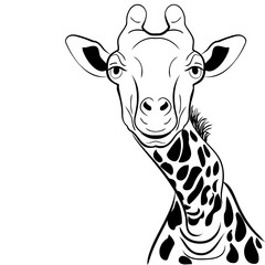 A graphical image giraffe head ink sketch