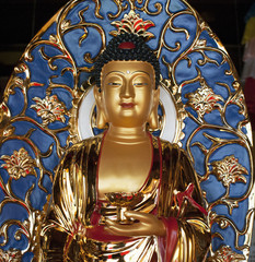 The statue of the Golden Buddha in the center of Buddhism Nanshan in China