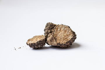 Tuber aestivum Summer truffle