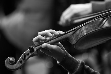 Hand of a girl on violin strings closeup in black and white tones