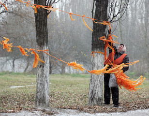 Municipal worker removes orange campaign ribbons of opposition presidential candidate Yushchenko ...