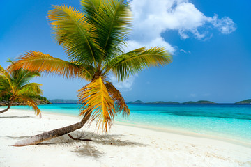 Beautiful tropical beach at Caribbean
