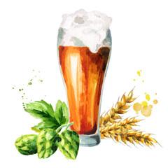 Dark beer, hops and malt. Watercolor