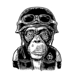 Monkey in the motorcycle helmet and glasses. Vintage black engraving