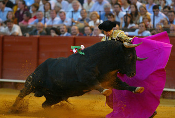SPANISH MATADOR EUGENIO DE MORA PERFORMS A PASS TO THE BULL DURINGBULLFIGHT IN SEVILLE.