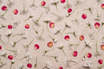 Decorative pattern of white cherry flowers and red petals