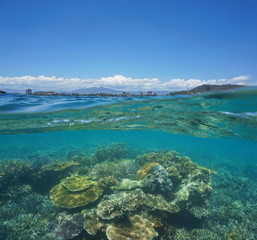 Over under water surface, beautiful coral reef underwater with the city of Noumea at the horizon, Grande-Terre, New Caledonia, south Pacific ocean