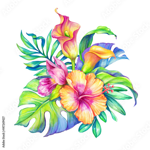 Watercolor Floral Illustration Exotic Nature Tropical Flowers Bouquet Orchid Hibiscus Cala