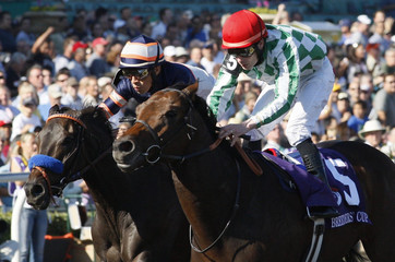 Muhannak with jockey Patrick J. Smullen in the irons wins first place in the Breeders' Cup Marathon race in Arcadia
