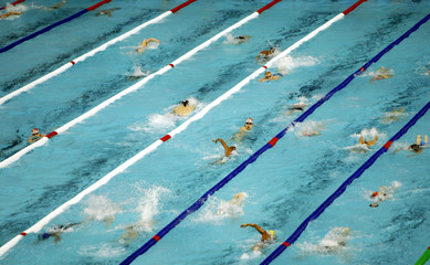 Swimmers train in the Palau Sant Jordi swimming pool in preparation for the 10th World Swimming Cham..