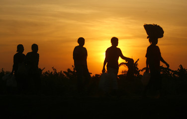 Farmers return home after the harvest at Gowa regency in Indonesia's South Sulawesi province