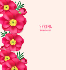 Spring background with pink peony flowers and buds. Floral template for your design. Vector illustration