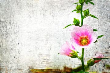 Flower on white grunge background, double exposure, fairy background