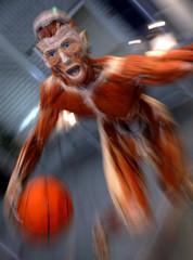 A plastinated human specimen showing a basketball player is pictured at Gunther von Hagen's exhibiti..