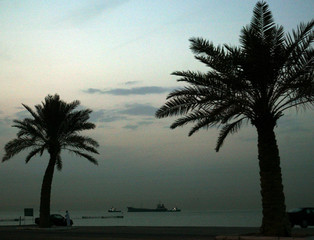 TANKER PASSES PALM TREES AT SUNSET IN KUWAIT.