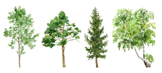watercolor cliparts of trees