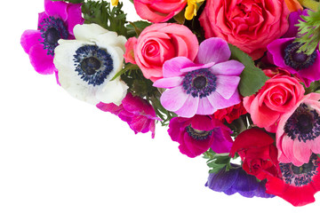 Fresh colorful anemones and roses flowers isolated on white background