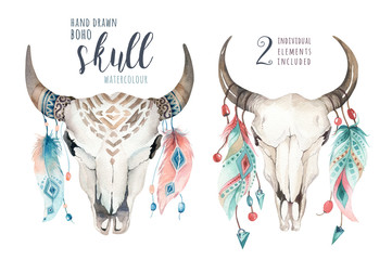Watercolor bohemian cow skull and feather. Western mammals. Boho hipster deer boho decoration print antlers.