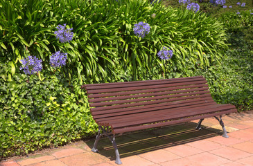 Empty wooden bench of the garden or the park