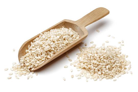 Sesame in wooden scoop