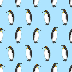 vector seamless pattern of penguin on blue background. Illustration of bird Emperor penguins
