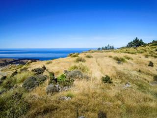 Hiking in idyllic Akaroa, Canterbury, New Zealand