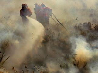 Firemen fight forest fire near Lisbon.