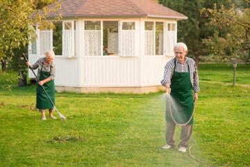 Senior man with garden hose. Gardeners at work.