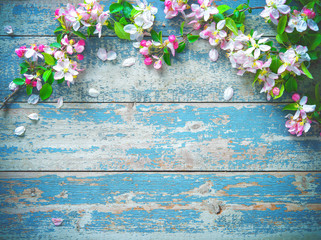 Spring blooming branches on blue wooden background.