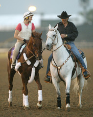 Race horse Funny Cide works out for Breeders Cup at Lone Star Park in Texas.