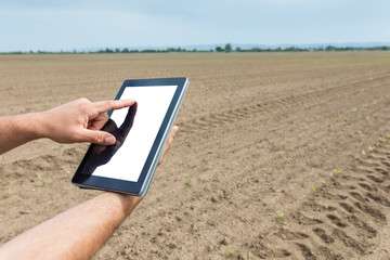 Farmer using tablet computer in agricultural cultivated field. White screen.