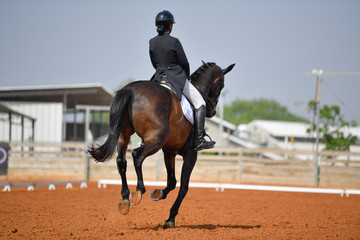Dressage rider on a bay horse