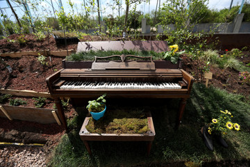 A piano is planted with flowers on a floating barge, which is planted with fruit trees as part of the Swale project called a collaborative floating forest, in the East River in the Brooklyn borough of New York