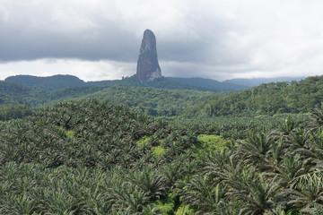Gipfel des Cao Grande, Sao Tome und Principe, Afrika