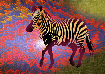 decorative illustration of zebra
