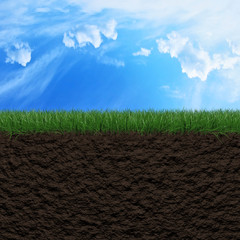 Grass, soil and sky background