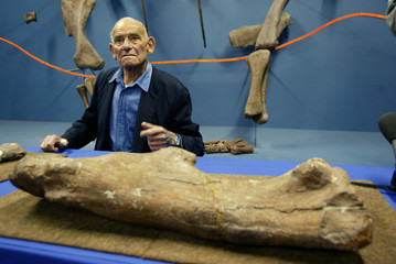Palaeontologist Professor James Kitching sits next to a massive leg bone from a newly-named dinosaur..