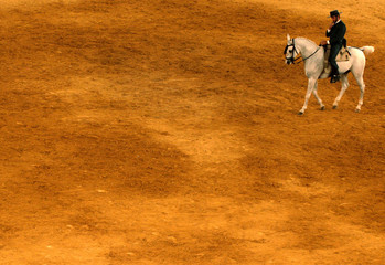 Andalusian rider rides during equestrian competition in San Roque