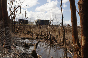 Debris, burnt trees and burnt tankers in the background are seen at the premises of Caribbean Petroleum Corp.'s refinery and tank farm the day after a fire was extinguished in Bayamon