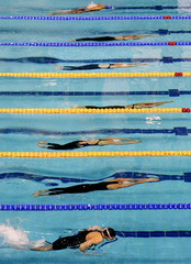 Competitors swim under water during the women's 100m individual medley competition at the European Short Course Swimming Championships in Debrecen