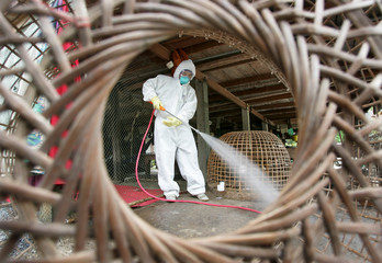 Livestock officials spray antiseptic chemicals around houses where chickens died of bird flu in ...