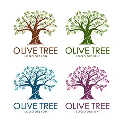 Olive Tree Design Logo Template