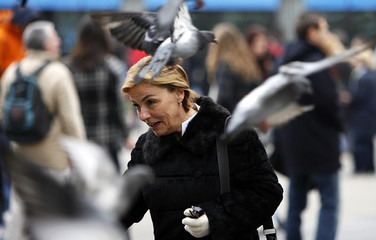 Pigeons fly around presidential candidate and Croatian People's Party President Vesna Pusic, at the beginning of her campaign at Zagreb's main square