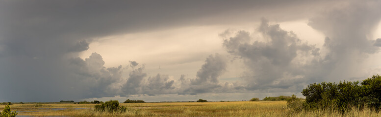 Panorama at the Everglades National Park